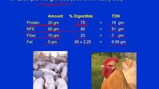 Nutrition 5 Evaluation of Feedstuffs