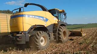 TATRA Phoenix and NewHolland in action-Siláže 2017