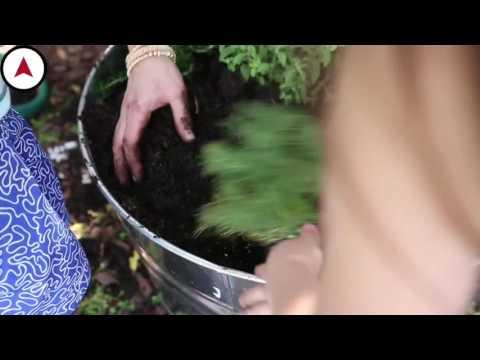 Norda Konakları Tanıtım Filmi