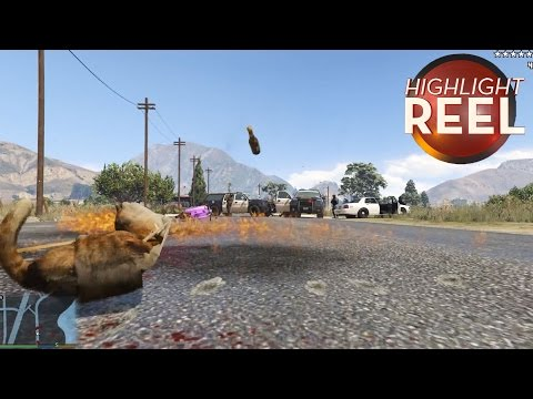 GTA Cat Goes On Molotov Cocktail Rampage
