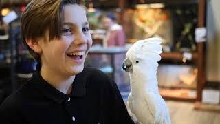 EducaZoo - Animal shelter & Birthday animations Quebec City