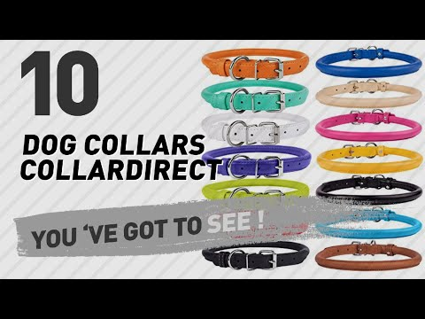 Dog Collars Collardirect // Top 10 Most Popular