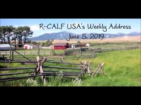 South Dakota Meetings and the Discussion of R-CALF USA's New Strategy to Accomplish Members' Goals