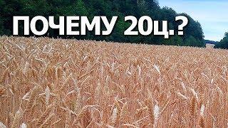 Почемууу??? Плохой урожай пшеницы 2018г. #Сельхозтехника ТВ