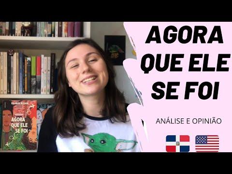 AGORA QUE ELE SE FOI - Elizabeth Acevedo - Análise e Resumo - Com e sem spoilers