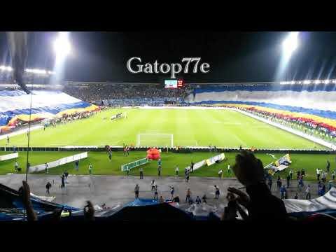 """""""La bandera más grande del mundo - MILLONARIOS"""" Barra: Blue Rain • Club: Millonarios"""