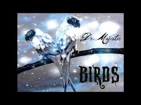 Birds - Dr. Majestic