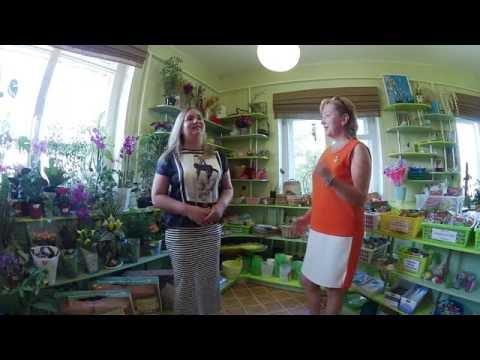 Хозяйка салона Фито декор Светлана Кайнова о цветочном бизнесе.