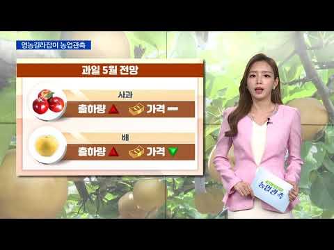 [영농길라잡이 농업관측] 과일, 과채 5월 관측 이미지