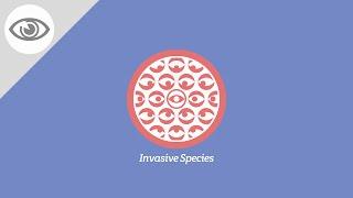 Are Invasive Species Breaking Ecosystems?