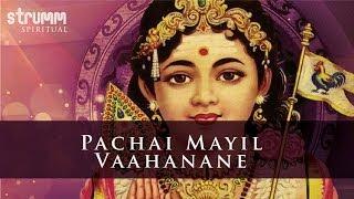 Pachai Mayil by Rakshita  with Young Superstars Haripriya Anu  Sivaangi