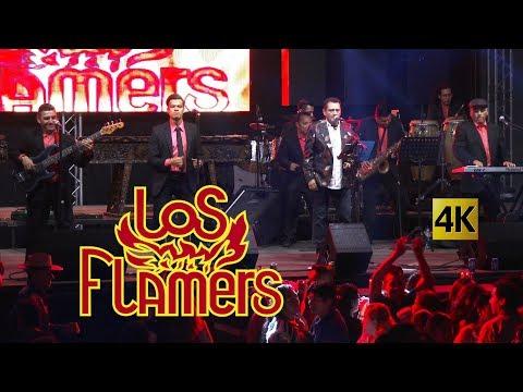 Los Flamers  -  Flamazo Navideño en vivo 4K