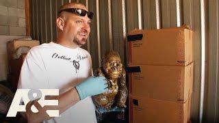 Storage Wars: Back to the Locker: Jarrod & Brandi's Interesting Finds - Part 1 | A&E - Video Youtube
