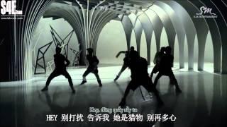 [Vietsub.Kara.Pinyin][S4E TEam] EXO - WOLF (Chinese Version)[EXOVIETNAM.COM]