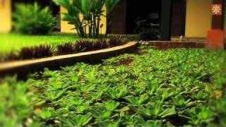 preview picture of video 'Hotel Amazon Bed and Breakfast - Leticia, Amazonas, Colombia'
