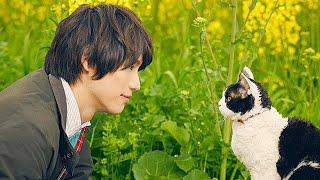 高分泪目电影,小伙养了一只猫,他想将猫送人,但猫却不愿意,猫奴太不容易了