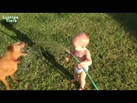 Glückliche Hunde & Babys spielen mit Wasser Hose - Happiest Video Ever!