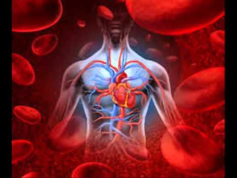 Tratar la hipertensión sin drogas