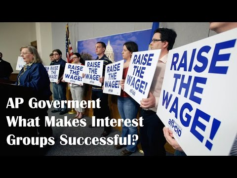 Video What Makes Interest Groups Successful?: AP Government