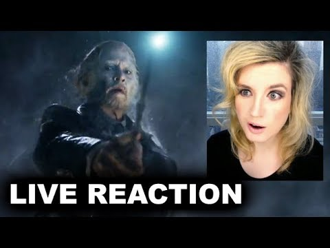 The Crimes of Grindelwald Final Trailer REACTION