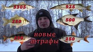 Нововведения в законе о рыбалке ростовская обл