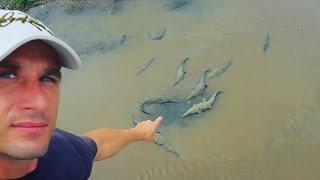 🐊 Krokodile, Vulkan Poas 🌋ein gewaltiges Donnerwetter⚡Regenzeit in Costa Rica #Weltreise m. Kindern