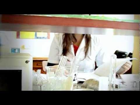 Samica patogen, jak zastosować