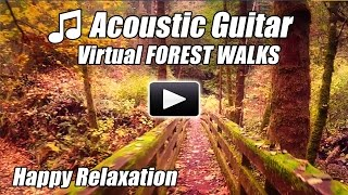 Acoustic Guitar Instrumental Virtual Walking Tour FOREST WALKS Treadmill Video Walk at home Relax