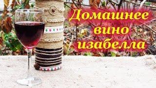 Домашнее вино из винограда изабелла, от сбора винограда до дегустации вина