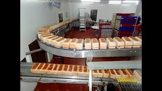 Bread Processing Factory- Automated Production Line With High Technology Machines