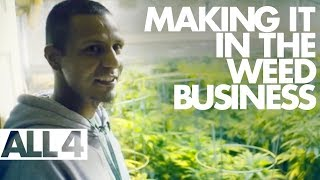 (Legal) Marijuana Business – How people make it