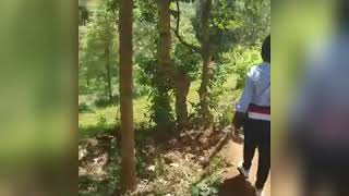 preview picture of video 'Journey to kisasa waterfalls in tz ,lushoti'