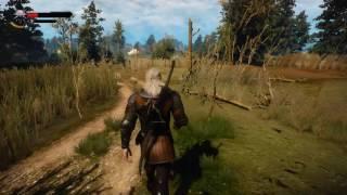 """Мод """"Последствия смерти"""" (к Ведьмак 3: Дикая охота \ The Witcher 3: Wild Hunt)"""