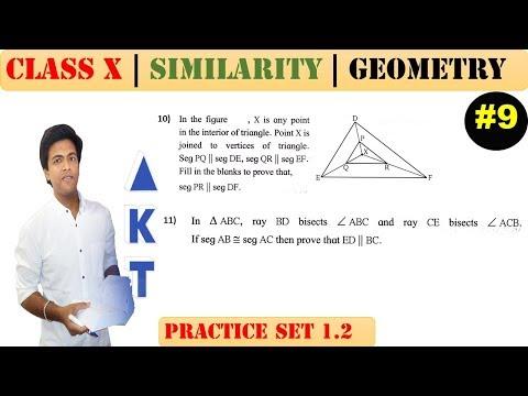 Similarity [Part 9] | Class 10 | Practice set 1.2 (MATHS 2) | Mah. (SSC) Board | Q10 and Q11