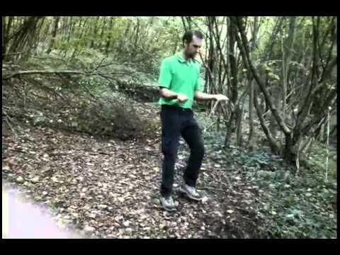 Vassoio per gambe e varicosity
