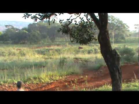 Chassi treinando pista Córrego Fundo
