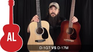 Martin D 1GT Vs D 17M   Can You Hear The Difference?