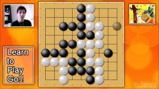 Learn To Play Go! A Guide for Beginners