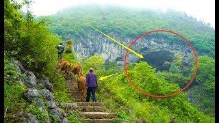 实拍贵州一山洞里住着18户人家,每天养鸡放牛过着与世无争的生活