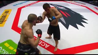 Best Crazy Moments in UFC  HD Legends of MMA