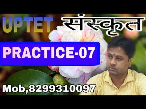 #🔴 UPTET [SANSKRIT] PRACTICE-07 मुख्य प्रश्न