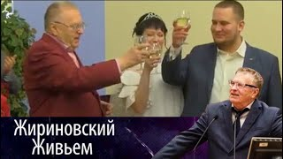 Жириновский стал свидетелем на свадьбе однопартийцев. Жириновский живьем от 19.02.18