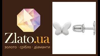 [Zlato.ua] Серьги Экспрессия в белом золоте  💎🦋💎