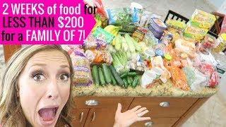 How I grocery shop + stock up on a budget! | Grocery shopping tips