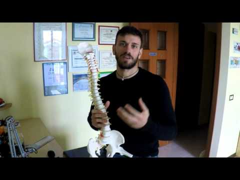 Malattie di spina dorsale lordoz