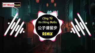 花僮 - 公子请留步 (DJ沈念版) Công Tử Xin Dừng Bước Remix - Hoa Đồng || Hot Tiktok Douyin