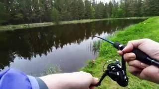 Платный водоем для рыбалки в ленинградской области
