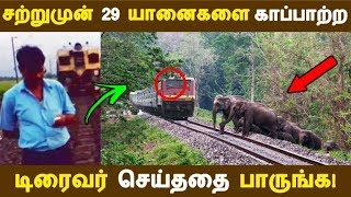சற்றுமுன் 29 யானைகளை காப்பாற்ற டிரைவர் செய்ததை பாருங்க! | Tamil News | Tamil Seithigal