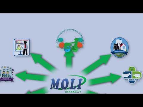 ინვეტ ჯგუფის და კომპანია MOLI-ის ერთობლივი პროექტი