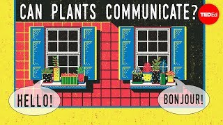 Can plants talk to each other? – Richard Karban